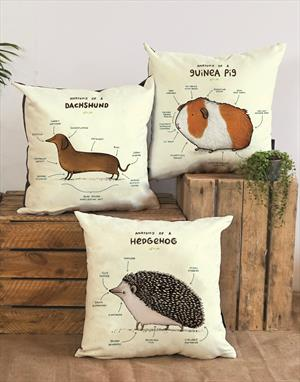 Anatomy Vegan-Suede Cushions by Sophie Corrigan for Wraptious